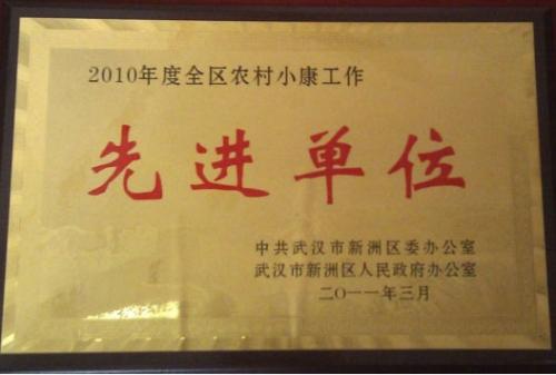2010年度建设农村小康工作先进单位
