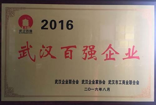 武汉百强企业